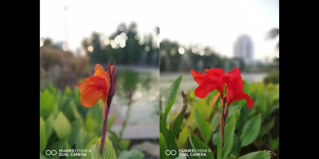 Huawei Nova 3i kamera belakang bokeh #2